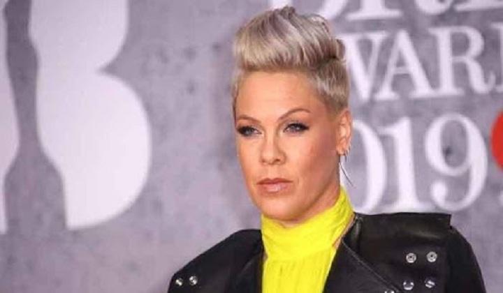 Singer Pink bags Icon Award at Billboard Music Awards   बिलबोर्ड म्युझिक अवॉर्ड्समध्ये सिंगर पिंकने आयकॉन अवॉर्ड मिळवला_40.1